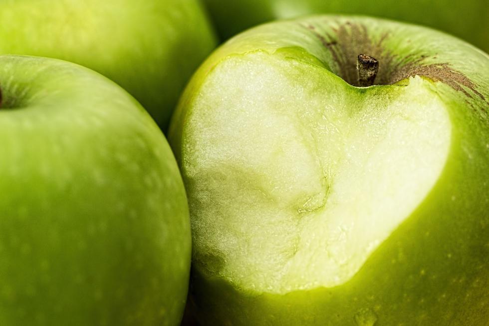 Pielęgnacja sadów - najbardziej popularne choroby jabłoni