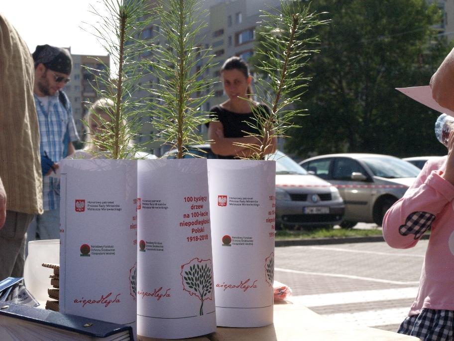 Wrocławianie otrzymali 2500 sadzonek za makulaturę oraz elektroodpady