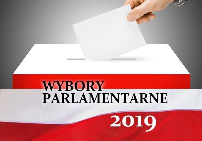 Wybory parlamentarne 13 października 2019 - procedury głosowania