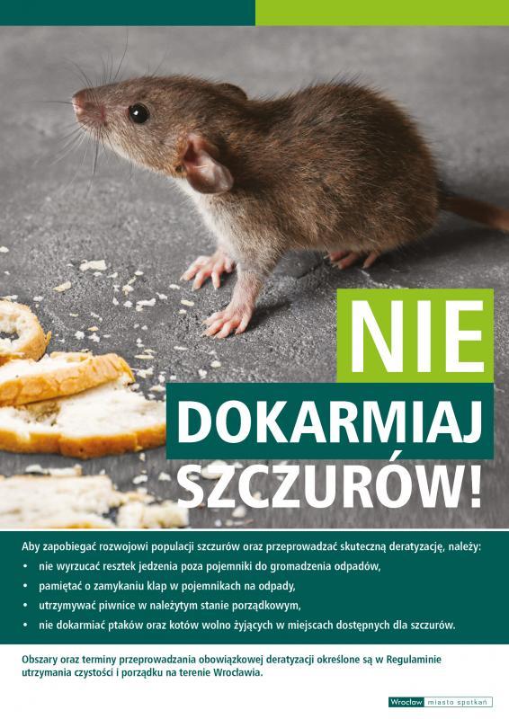 Obowiązkowa deratyzacja weWrocławiu