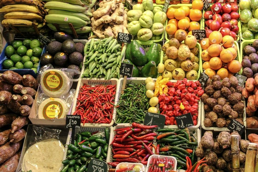 Żywność ekologiczna – wszystko, co musisz oniej wiedzieć